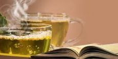 tea ant torah